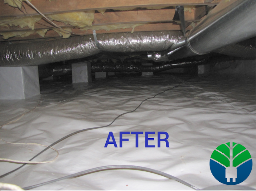 Woodfin Crawlspace Encapsulation (Before & After)